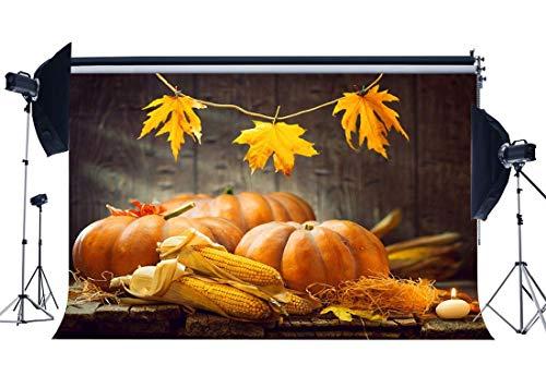 BuEnn Thanksgiving Day Feier Hintergrund 7X5FT Vinyl Herbst Ernte Maiskolben Kürbisse Kulissen Düstere Holzfußboden Interieur Halloween Fotografie Hintergrund für Party Fotostudio Requisiten