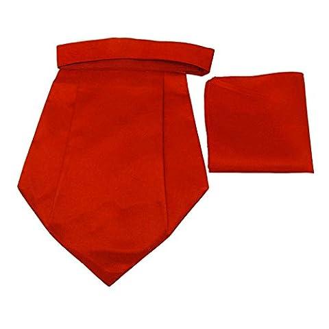 Jacquard Poly Satin Ascot Cravat Tuxedo Party Couture Tie Hommes Accessoires