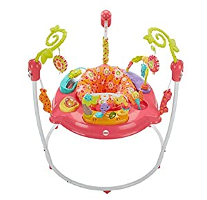 Fisher-Price Petals Jumperoo, Centro de Actividades para recién Nacido, con música y Luces, Color Rosa