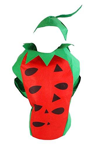 Kind Kostüm Wassermelone - Petitebelle Wassermelonen-Kostüm für Schulaufführungen und Feiern, Kinderverkleidung für Mädchen und Jungen, Obst-Kostüm