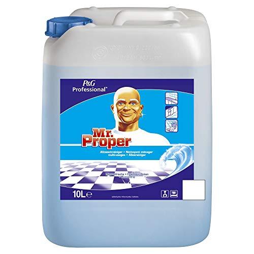 Meister Proper Professional Meeresfrische Allzweckreiniger, 10 Liter