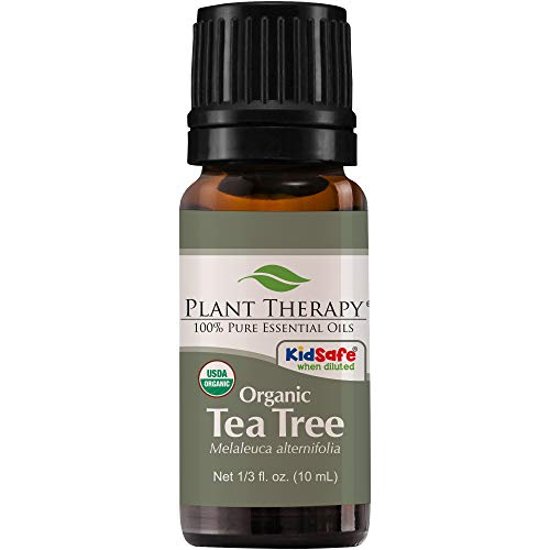 USDA Certified Organic Tea Tree (Melaleuca) Essential Oil  10 ml (1/3 oz)   100% Pure, Undiluted, Therapeutic Grade  by Plant Therapy Essential Oils