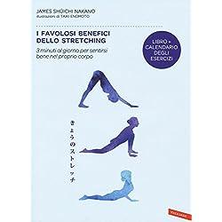 41VUWz9ZnTL. AC UL250 SR250,250  - Guida alla scelta dei migliori attrezzi per stretching e recupero attivo