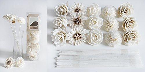 plawanature Set der DIY 15Gemischt Sola Blume mit Reed Diffusor Stick für Home Duft. (Beliebtes Set 01) -