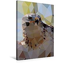 Premium Textil-Leinwand 50 cm x 75 cm hoch, Greifvogel | Wandbild, Bild auf Keilrahmen, Fertigbild auf echter Leinwand, Leinwanddruck (CALVENDO Tiere)