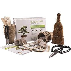 BONSAI BAUM SET, Züchte dein eigenes Bonsai - Züchte einfach 5 Arten von Bonsai-Bäumen mit unserem kompletten, anfängerfreundlichen Starter-Samen-Set - Einzigartige Geschenkidee Premium-Geschenkset