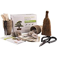 Bonsai Tree KIT - Grow Your OWN Bonsai Trees from Seeds - Gardening Gift Set - Premium Quality KIT - Big Value Pack, Seed Germination Starter Kit with 5 Seed Species. Includes 3 Superior Bonsai Tools