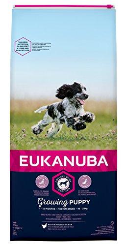 Eukanuba Puppy Welpenfutter für mittelgroße Rassen – Ausgewogenes Trockenfutter mit verbesserter, neuer Rezeptur für Welpen im Alter von 1-12 Monaten in der Geschmacksrichtung Huhn – 1 x 15g Beutel