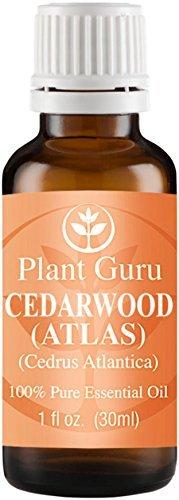 Cedarwood (ATLAS) Essential Oil. 30 ml (1 oz) 100% Pure, Undiluted, Therapeutic Grade. by Plant Guru par