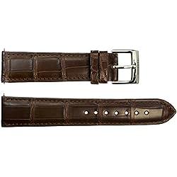 Watch Strap in Dark brown Alligator - 20 - - buckle in stainless steel - B20039