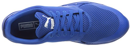 Puma Duplex Evo Graphic Maschenweite Tennisschuh Puma Royal