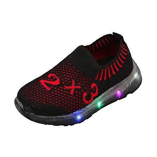 ❤️ Zapatos Bebe niña,Niños Kid Girls Boys Led Light Star Luminous Sport Mesh Student Casaul Zapatos Absolute