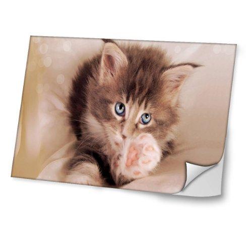 Virano Katzen 10018, Braune Katze, Skin-Aufkleber Folie Sticker Laptop Vinyl Designfolie Decal mit Ledernachbildung Laminat und Farbig Design für Laptop 12