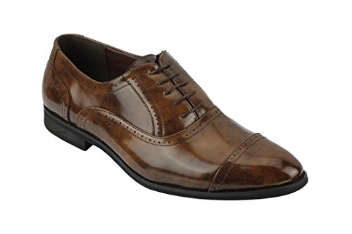 Xposed - Brogue Uomo Marron