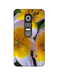 Mobifry Back case cover for LG G2 Mobile ( Printed design)