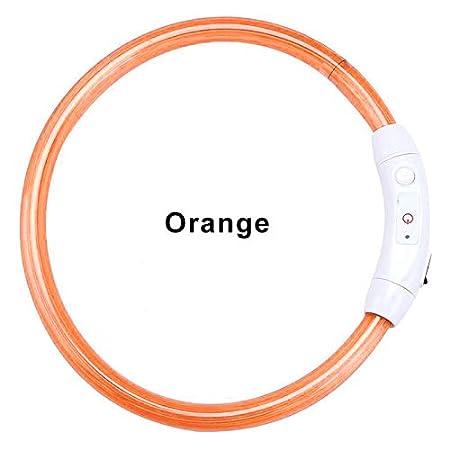 BEARCOLO LED-Hundehalsband, wasserabweisend, beleuchtetes Hundehalsband, USB-wiederaufladbar, leuchtendes Halsband für…