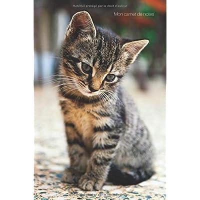 Carnet de notes: spécial chaton (journal, croquis, pense-bête, listes) - 15 X 22 cm - 100 pages