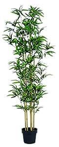 Bamboo Artificiale U.V.R. - H.160cm - 4 Canne - Tronchi veri - Vaso Incluso