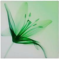 Premier Housewares Stargazer Glass Print, 60 x 60 cm - Green