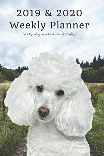 2019 & 2020 Weekly Planner Every dog must have his day.: Funny Poodle in Nature: Two Year Agenda Datebook: Plan Goals to Gain & Work to Maintain Daily & Monthly (6 x 9 in; 105 pages) -