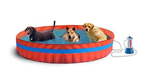New Plast 3100K–My Dog Pool piscina para perros con filtro, 305x...