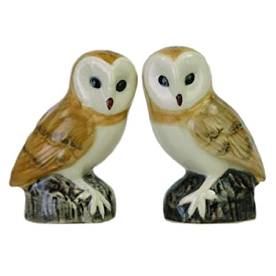 Quail Ceramics - Barn Owl Salt And Pepper Pots by Quail Ceramics