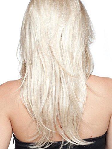 Net Mode Haar (Perücken Europa und die Vereinigten Staaten mode gradienten frauen rosen net perücke setzt WIG SW072)