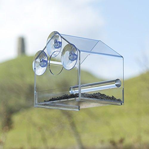 Fenster Vogelfutterspender mit glänzender BOX, Ideales Geschenk, EXTRA-STARKEN Saugnäpfen, BONUS alkoholischen Reinigungstüchern