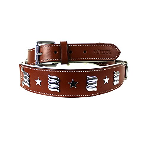 Michur Muna brown leather collar with silver applications for dogs available in different sizes