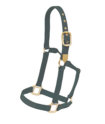 Colorado-Saddlery 8-623 Neue & Verbesserte Colt Hi Country Hunter Halfter, grün