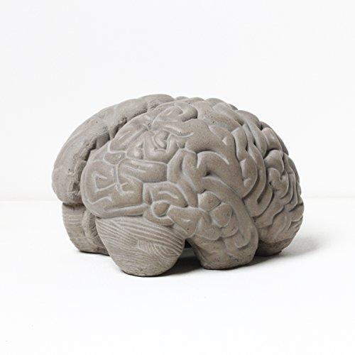 Lyon Beton Grey Matter Brain Concrete Bookends