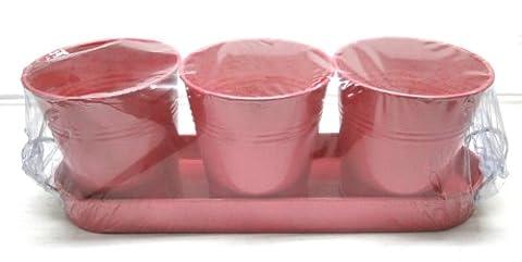 3 pots avec plateau herbe aromatique tole zinc plante