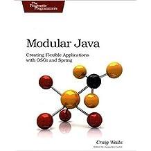 Modular Java: Creating Flexible Applications with Osgi and Spring (Pragmatic Programmers) (English Edition)