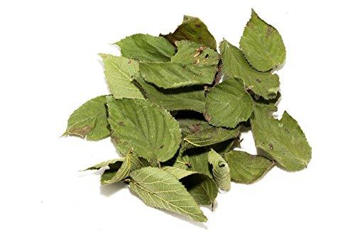 Nano Brombeer Laubblätter (grün getrocknet), 20 Blätter - Garnelenfutter