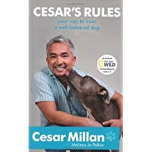 Cesar's Rules: Your way to train a well-behaved dog by Cesar Millan (2011-02-03)