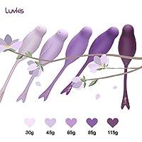Luvkis Kegel Bolas para mujer Ben Wa Set con 5 Kegels de ejercicio premium pesados y ligeros para el control de la vejiga fortalecimiento del músculo pélvico estiramiento y placer principiantes y avanzados