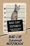 Bad Cat Savannah Notebook