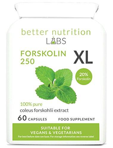 Forskolin XL -Ziernessel Forskohlii (20% Forskolin) Extrakt - Nahrungsergänzung -Von Better Nutrition Labs - 60 Kapseln -