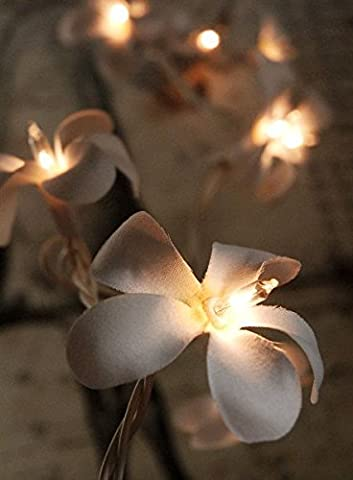 Outdoor Garden Flower Frangipani 20 LED Solar Power Fairy Lights Weather Proof Party White