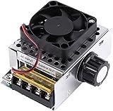 AC 220V 4000W SCR Regulador de Voltaje eléctrico con el Ventilador de refrigeración, regulador de Velocidad de Motor de regulador de Temperatura