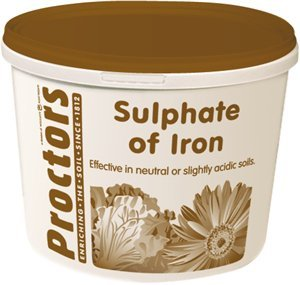 5kg-airtight-tub-of-proctors-sulphate-of-iron-to-kill-moss-and-weeds-in-your-lawn-moss-killer