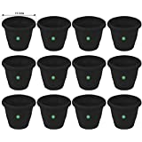 TrustBasket UV Treated Plastic Round Pot(6 Inches)-Black Color-Set of 12