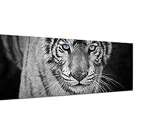 leinwandbild als panorama in 150x50cm tiger wildkatze nahaufnahme schwarz wei. Black Bedroom Furniture Sets. Home Design Ideas
