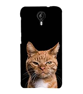 ifasho Designer Phone Back Case Cover Micromax CanvasNitro3E455 ( I Am the One Quotes )