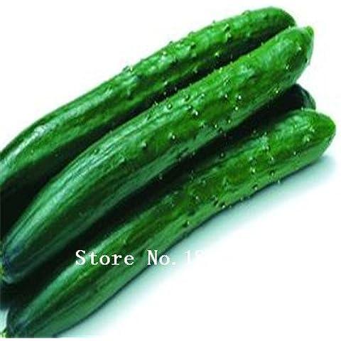 Grande vendita di vendita caldi 100pcs bianco cetriolo semi domestico di DIY giardino verde Vegetable Seeds