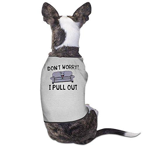 theming-no-te-preocupes-me-tire-perro-chaleco