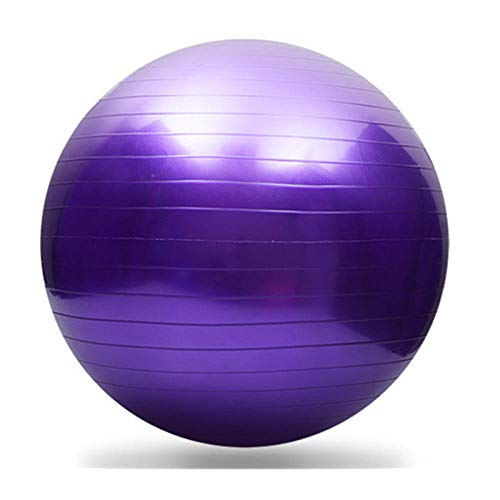 Pelota Suiza Gym Ball 95CM Bola para Pilates