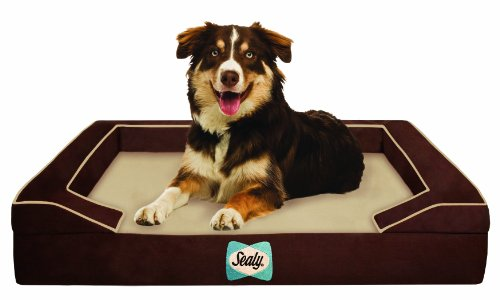 sealy-dog-bed-with-quad-layer-technology-medium-autumn-brown