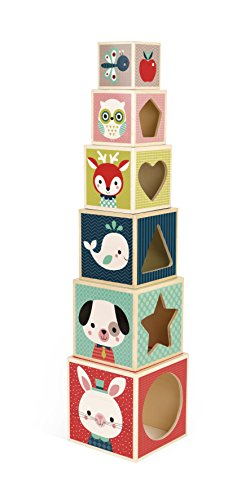 Janod - J08016 - Pyramide 6 Cubes Baby Forest