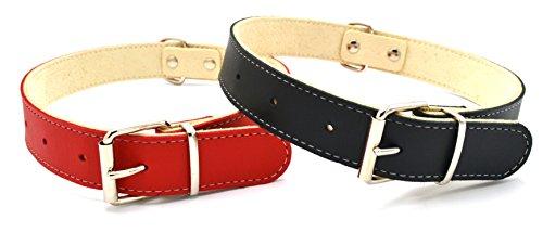 Pack 2x1 Accesorios para Perros - 2 Collares para Perro de Cuero - Todos los tamaños Pequeños...